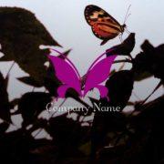 蝶をモチーフに作成したロゴマーク